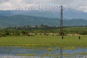 «Россети» увязли на Северном Кавказе