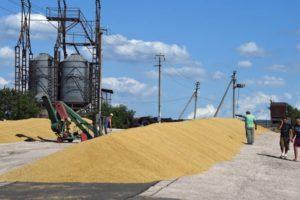 Зерно посыпалось за границу